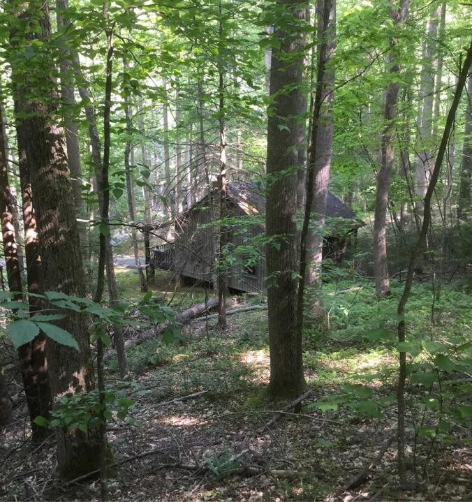 Cabin 12 Roan Mtn